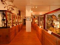 Blick in die Emil-Weiske-Ausstellung